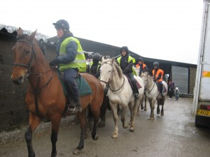 Horse Ridding at Lonfield Farm 4
