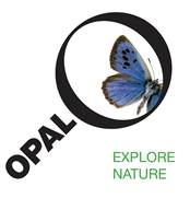 OPAL Air Tree survey logo