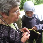Investigating different kinds of lichen